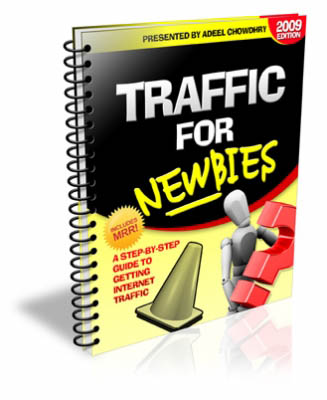 Traffic For Newbies