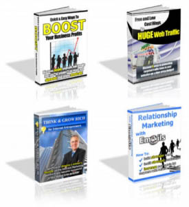 4 Pack PLR eBooks