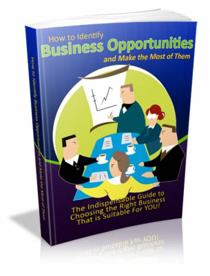 How to Identify Business Opportunities and Make the Most of Them
